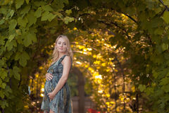härlig gravid flickapark Fotografering för Bildbyråer