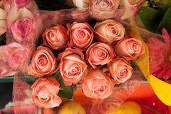 Bukett av att rodna till salu rosa ro Fotografering för Bildbyråer
