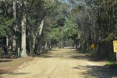 Härlig grusväg Royaltyfri Bild
