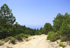 Härlig grusväg i bergen Arkivfoton