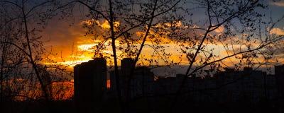Härlig gul solnedgång med moln Stad på en bakgrundshimmel med moln arkivbilder