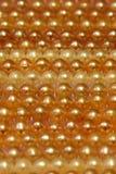 Härlig guld- pärla Arkivbilder