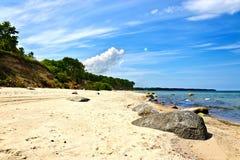 Härlig guld- sandig baltisk strand fotografering för bildbyråer