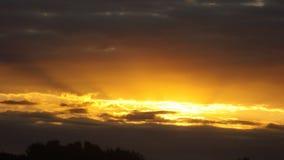 Härlig guld- solnedgång Arkivfoto