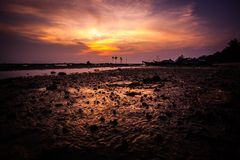 Härlig guld- solnedgång på havet, Thailand, Koh Royaltyfri Foto