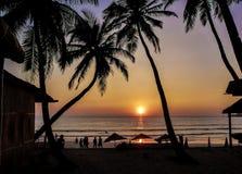 Härlig guld- solnedgång på stranden, GOA, Indien Royaltyfri Fotografi