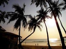 Härlig guld- solnedgång på stranden, GOA, Indien Arkivbild