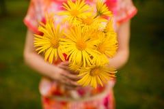 Härlig guling blommar i händer av flickan arkivfoto