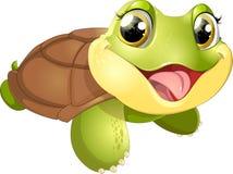 Härlig gullig sköldpadda Arkivfoto