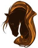 härlig häst Royaltyfri Bild