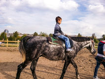 Härlig häst och barn Royaltyfri Bild