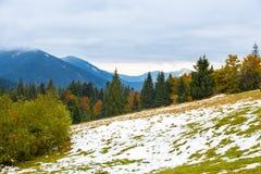 Härlig höst, ett färgrikt berglandskap med snö-korkade maxima och gula träd Arkivfoto