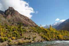 Härlig höst i nordliga Pakistan Arkivfoton