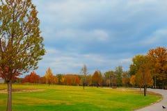 Härlig höstgränd i parkera med färgrika träd Arkivfoton