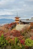 Härlig höstsikt av den Kiyomizu-dera templet i Kyoto, Japan fotografering för bildbyråer