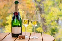 Härlig höstsikt av en champagneflaska med två exponeringsglas på en tabell utomhus arkivbild