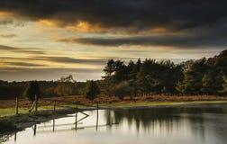 Härlig höstsolnedgång över sjölandskap i skog Fotografering för Bildbyråer