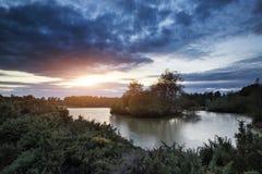 Härlig höstsolnedgång över sjölandskap i skog Royaltyfria Foton