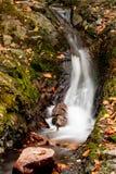 Härlig höstvattenfall Fotografering för Bildbyråer