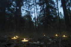 Härlig halloween sammansättning med runor och stearinljus på gräset i mörk höstskogritual royaltyfri fotografi