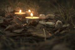 Härlig halloween sammansättning med runor och stearinljus på gräset i mörk höstskogritual Fotografering för Bildbyråer