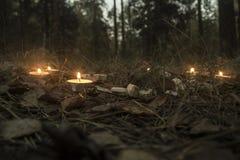 Härlig halloween sammansättning med runor och stearinljus på gräset i mörk höstskogritual Royaltyfri Foto