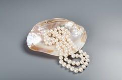 Härlig halsband av vitpärlor i pärla Arkivfoto
