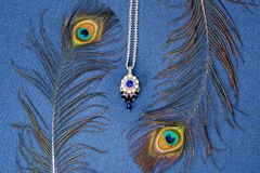 Härlig halsband som är handgjord royaltyfri bild