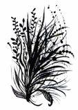 Härlig hand-dragen monokrom örtillustration vektor illustrationer