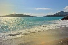 Härlig havsfjärd i sommar adriatic hav Montenegro Royaltyfri Foto