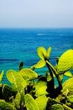 härlig havsikt Royaltyfri Bild