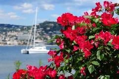 Härlig havssikt i Cannes Arkivfoton