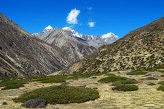 härlig himalayan liggande Grön dal och majestätisk mountai Royaltyfria Foton