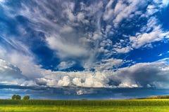 Härlig himmel med moln över ett fält av havre Arkivfoto