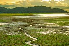 Härlig himmel under solnedgång, sprucken jordning med litet grönt gräs och litet vattenflöde som leder till floden Royaltyfri Bild
