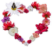 Härlig hjärta som göras av olika blommor som ett symbol av förälskelse Royaltyfri Foto