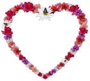 Härlig hjärta som göras av olika blommor som ett symbol av förälskelse Royaltyfria Bilder