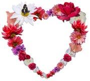 Härlig hjärta som göras av olika blommor som ett symbol av förälskelse Royaltyfri Fotografi