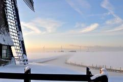 härlig holland vinter royaltyfri fotografi
