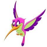 härlig hummingbird Arkivbild