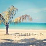 Härlig instagram av den ensamma palmträdet på en tropisk strand med Arkivbild