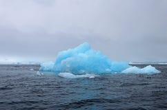 Härlig isberg- eller isisflak, antarktiskt hav Arkivfoto