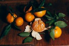 Härlig julgarnering med tangerin i nattljusgirlanderna Citrus stilleben nytt symbolår Royaltyfri Bild