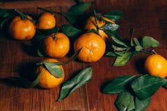 Härlig julgarnering med tangerin i nattljusgirlanderna Citrus stilleben nytt symbolår Royaltyfri Foto