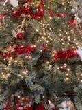 Härlig julgran med röda klirr arkivbilder