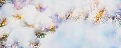 Härlig julsnöbakgrund med granträdfilialer, snö och ljus, vintertid, ferie för nytt år fotografering för bildbyråer