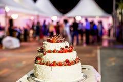 Härlig kaka med körsbär och jordgubbar Royaltyfria Bilder
