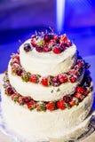 Härlig kaka med körsbär och jordgubbar Royaltyfri Foto