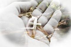 Härlig katolsk natur Art High Quality royaltyfria bilder