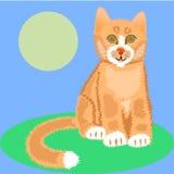 härlig kattred Arkivbilder